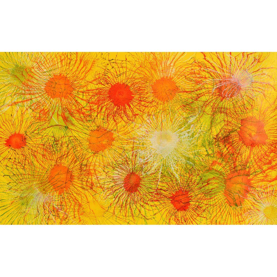 Exploflora Series No.07 by Sumit Mehndiratta