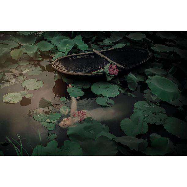 The Lotus Lake VI by Viet Ha Tran