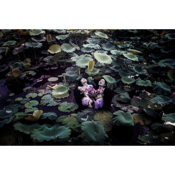 The Lotus Lake IV by Viet Ha Tran