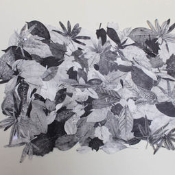 Nature (Leaves) by Siyan Wei