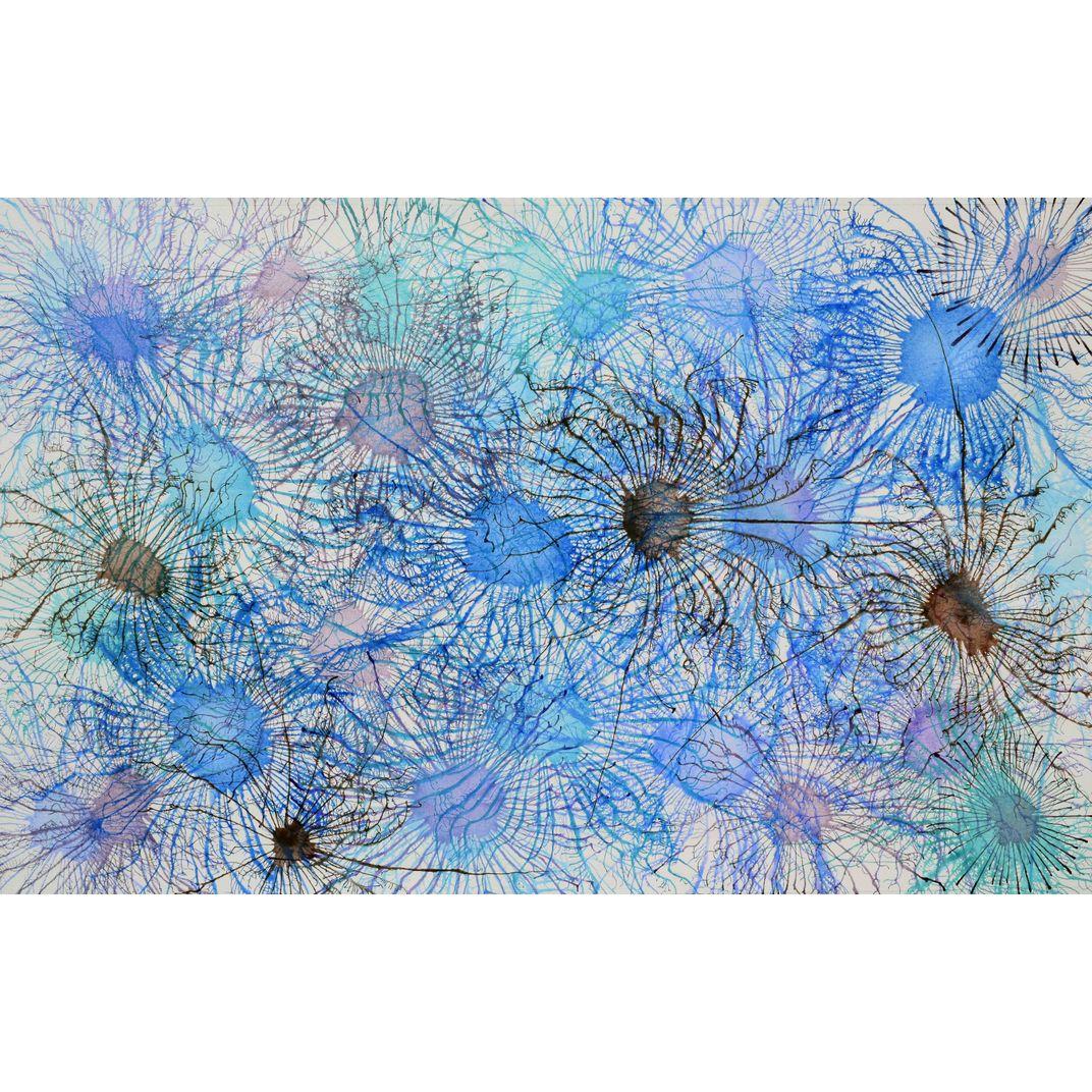 Exploflora Series No. 08 by Sumit Mehndiratta