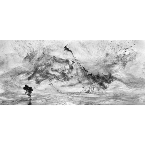 Mushrooms and Trees 19 by Van Chu