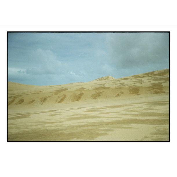 Northland Sand Dunes by Damian Seagar