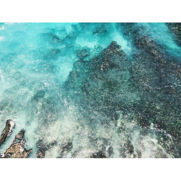 Ocean Canvas by Lau King