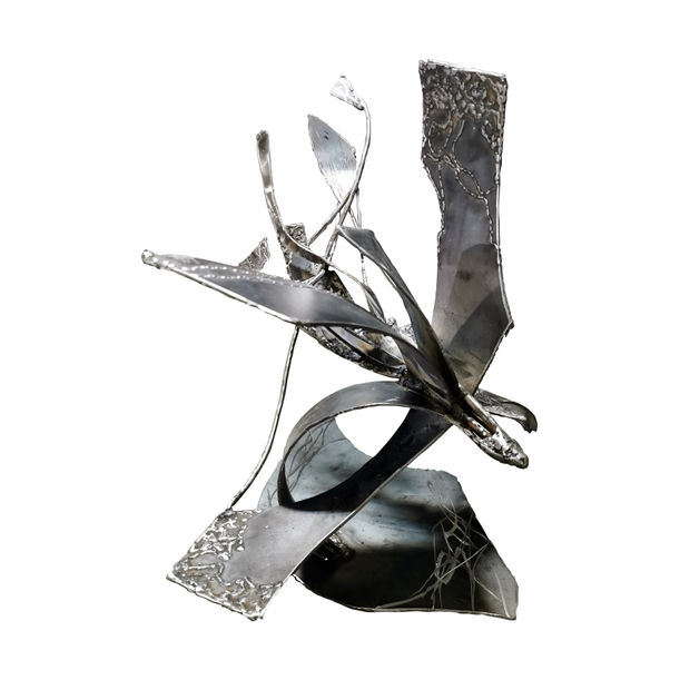 Star bird playing with her shape by Kloska Ovidiu