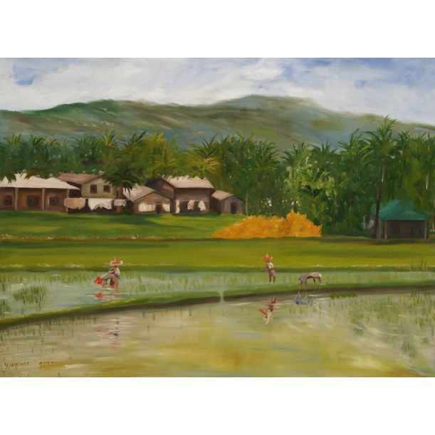 Rice Field At the Philippines by Yaffa Wainer