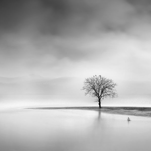 Landscape in the Mist by George Digalakis