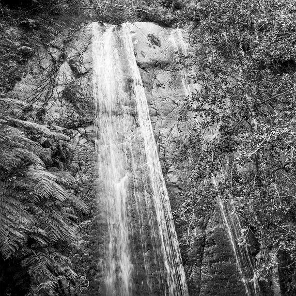 0427-05_2 -  Sichahue - Lago Ranco - Chile by Gonzalo Contreras del Solar