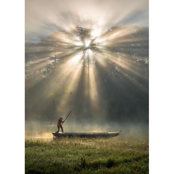 Under sunshine by Trung Pham Huy