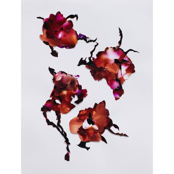 Bouquet #7 by Rachael Jablo