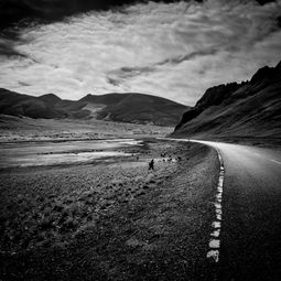 Under the Sky, I Walk by Shirren Lim