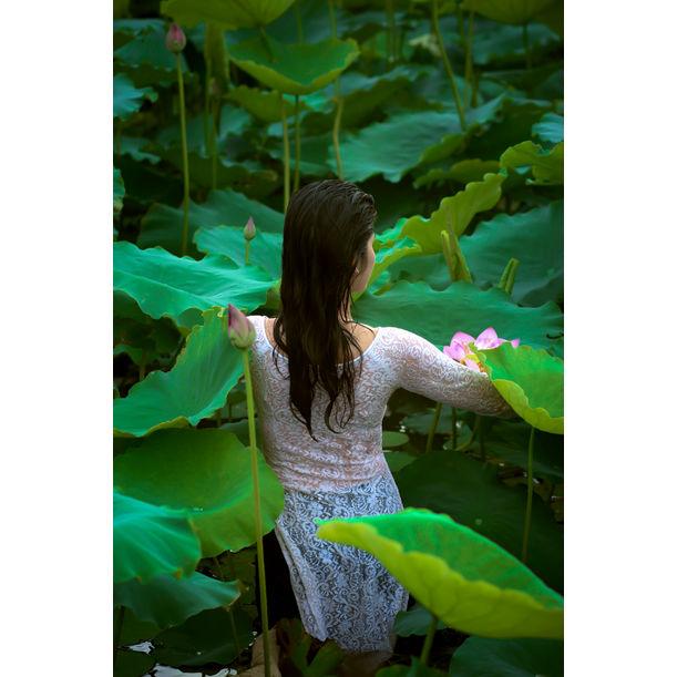The Lotus Lake X by Viet Ha Tran