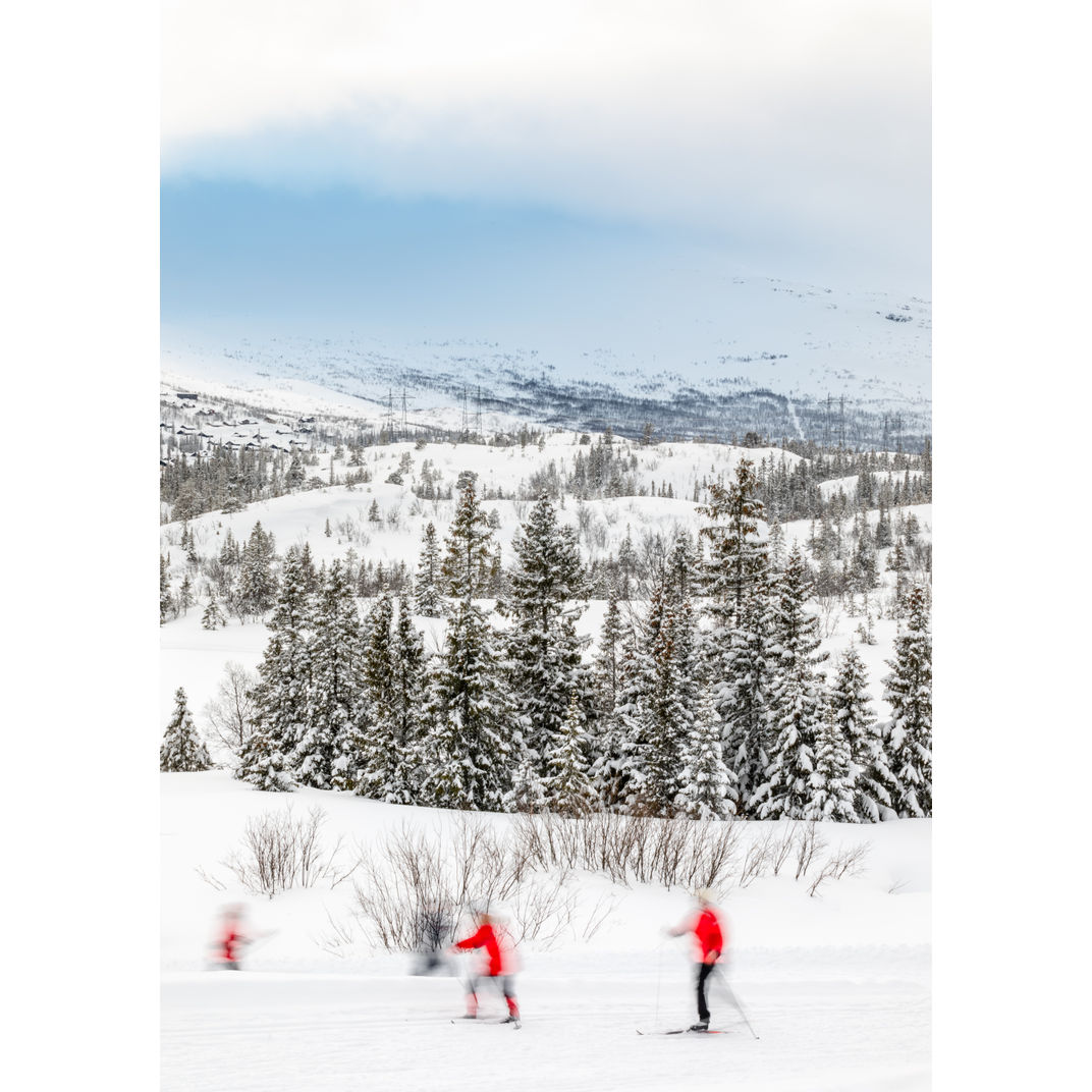 Cross-country skiers in red jackets by Romulo TIJERO