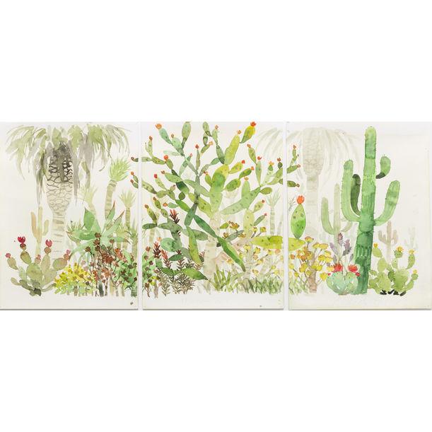 Cactus Garden by Ahmad Zakii Anwar