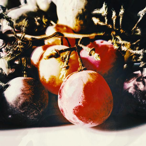 Old Grape in dish No.3 by Lert Kawcharoenpol