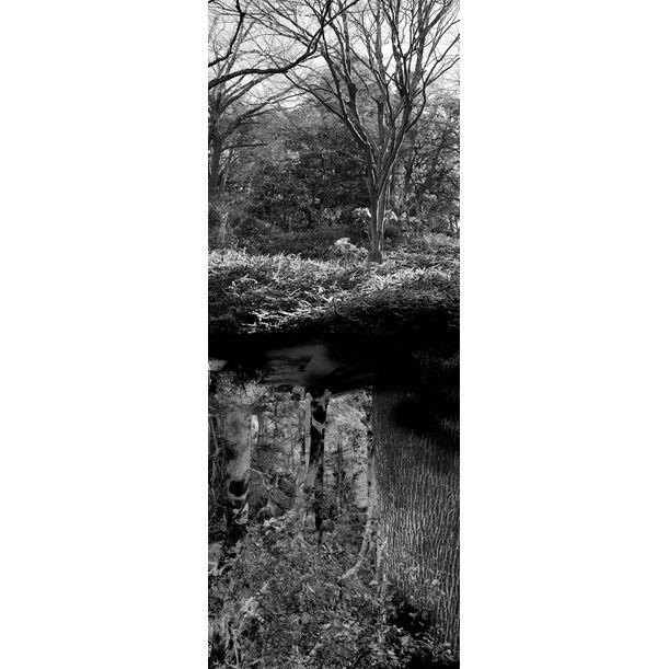 Reflecting landscape 08 by Yasuo Kiyonaga