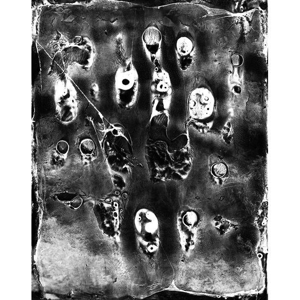 Spirit of Forest 10 by Yasuo Kiyonaga