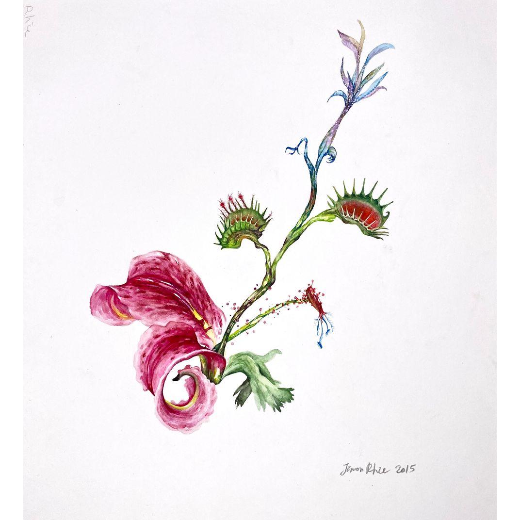 Hybrid Flowers_Lily2 by Jiwon Rhie