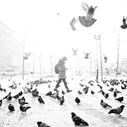 Cold by Shirren Lim