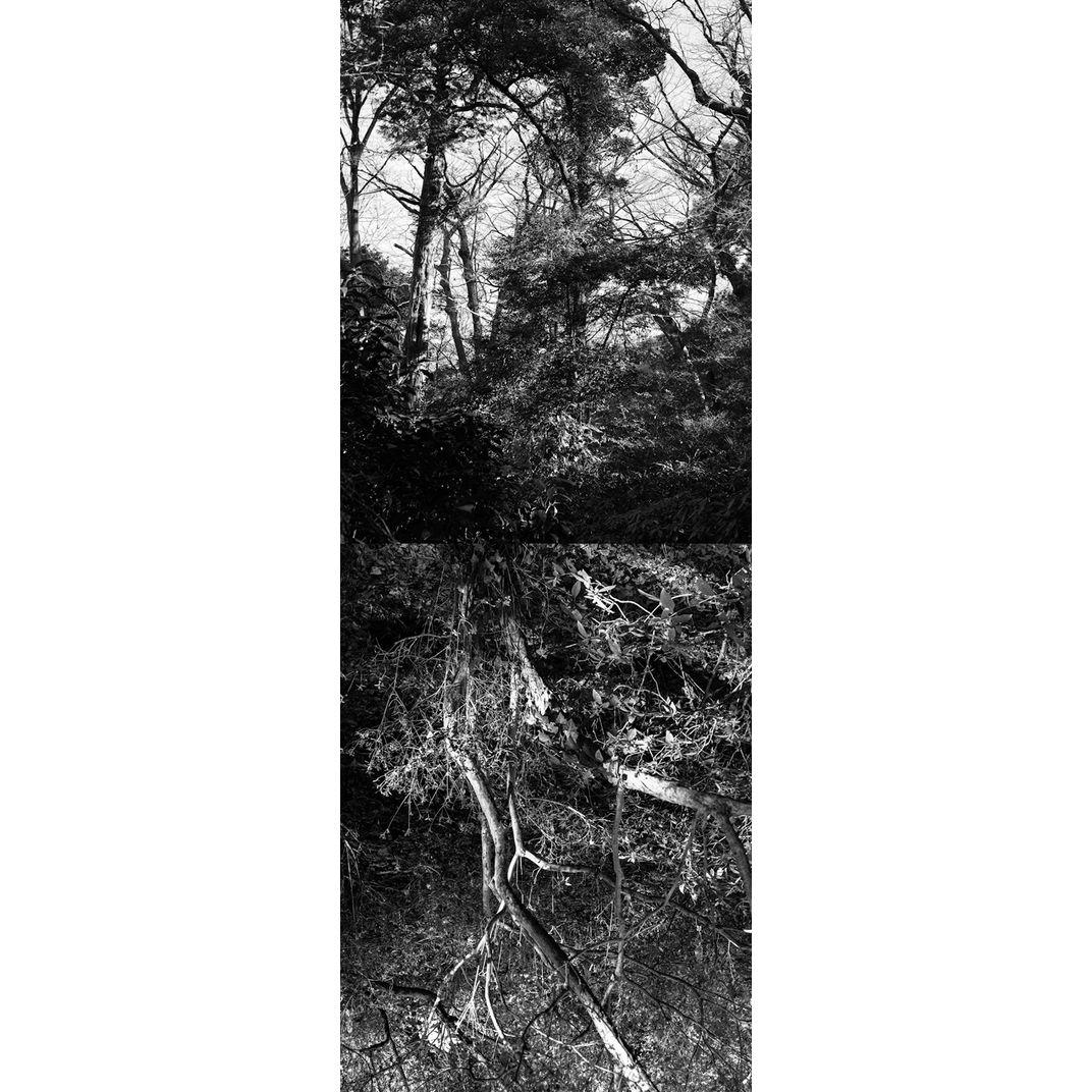 Reflecting landscape 11 by Yasuo Kiyonaga