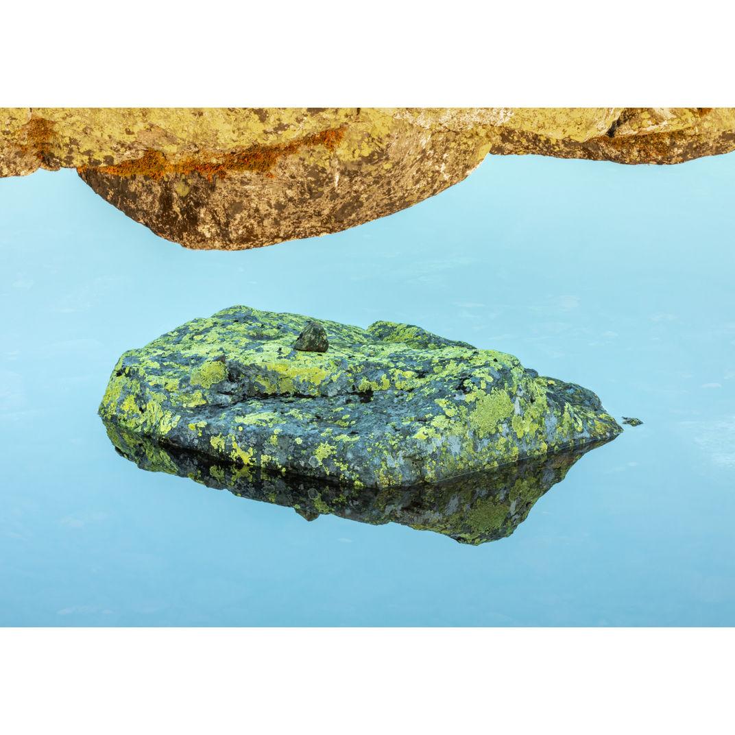 Floating on quiet water by Romulo TIJERO