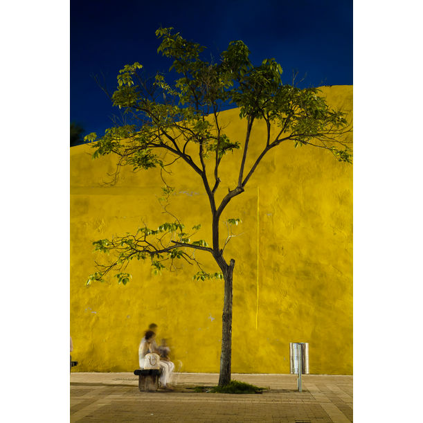 The yellow wall by Edgar Garcés