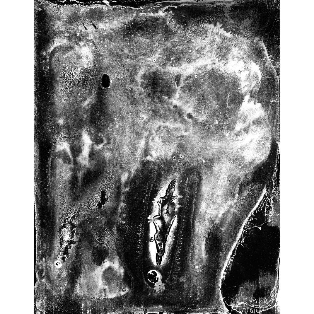 Spirit of Forest 03 by Yasuo Kiyonaga
