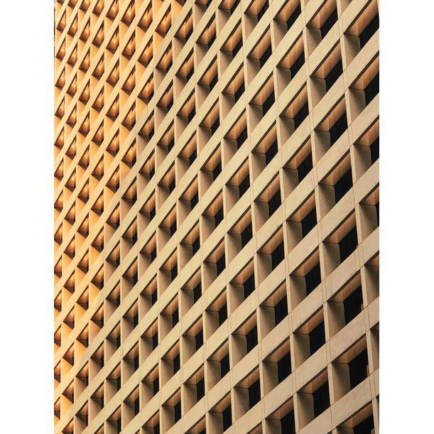 Grid by Lau King