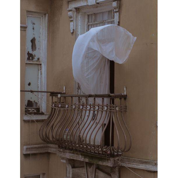 The gust of the wind by Kira Gyngazova