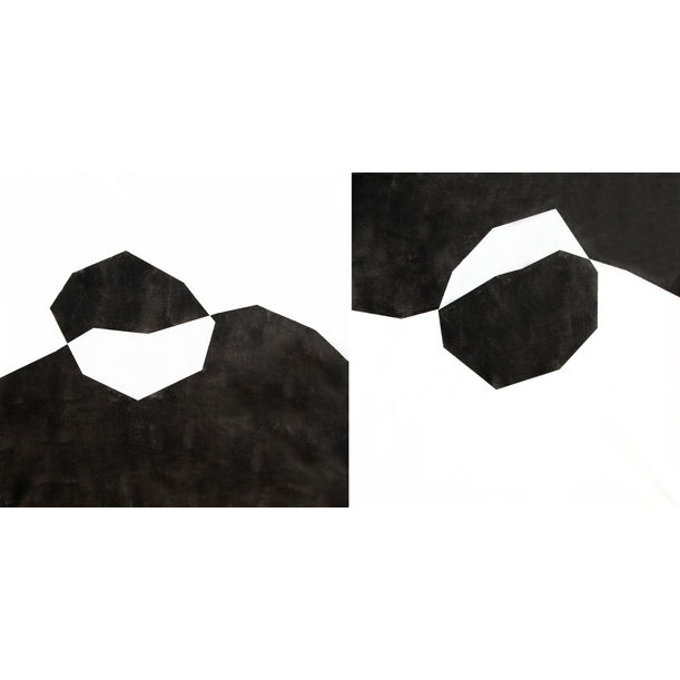 Diptych Contrast by Catia Goffinet