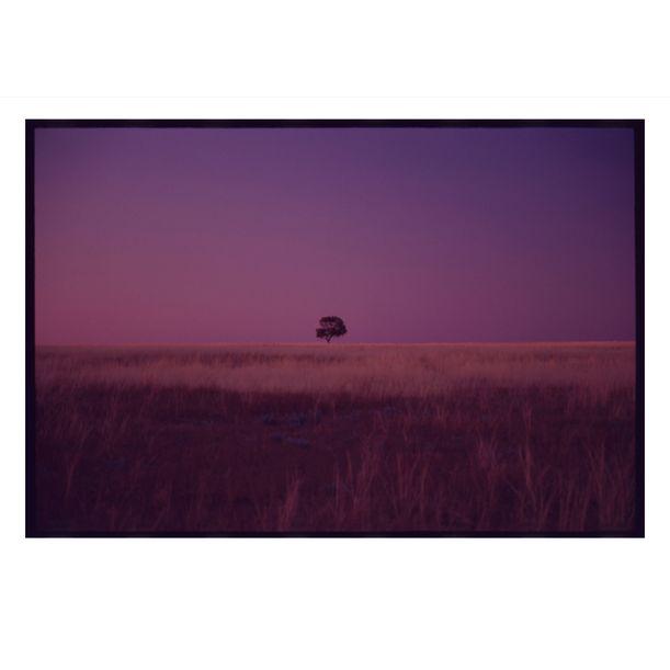 Ivanhoe Sunset by Damian Seagar