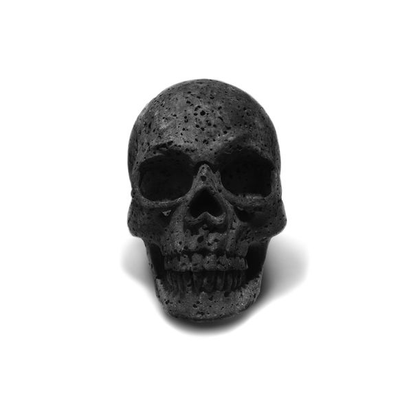 Skull by Studio Buzao