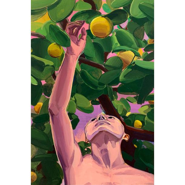 Fruits by Baoyuan Zhu