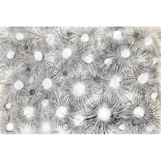 Exploflora Series No. 55 by Sumit Mehndiratta