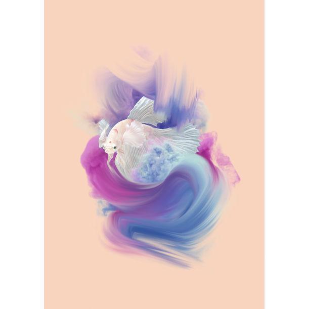 Fresh Fish XXX by Marlies Plank