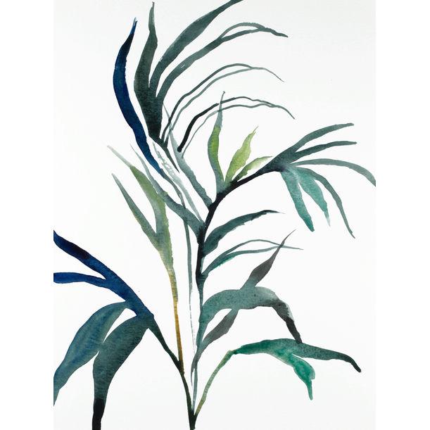 Plant Study No. 90 by Elizabeth Becker