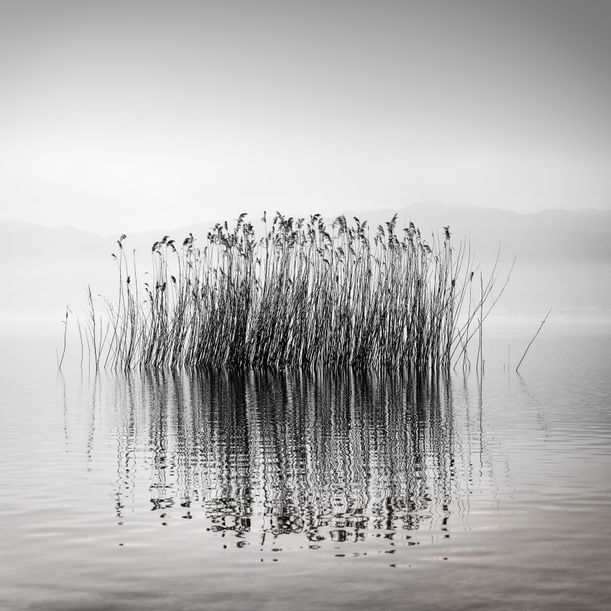 Quiet Waters by George Digalakis
