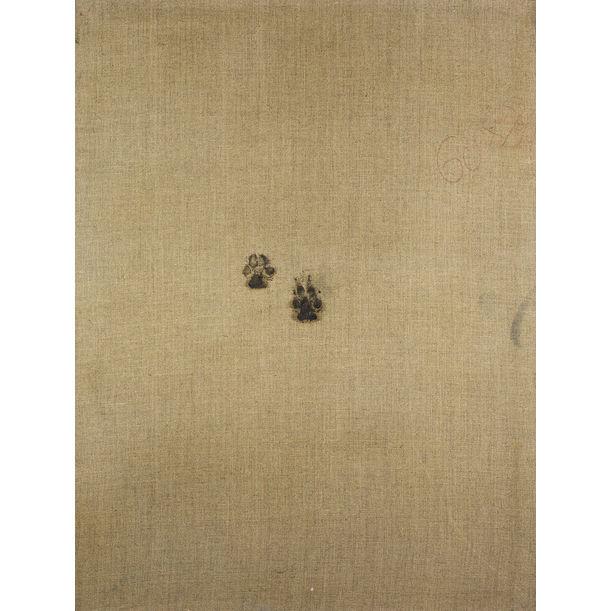 Footprint by Eddie Wolf