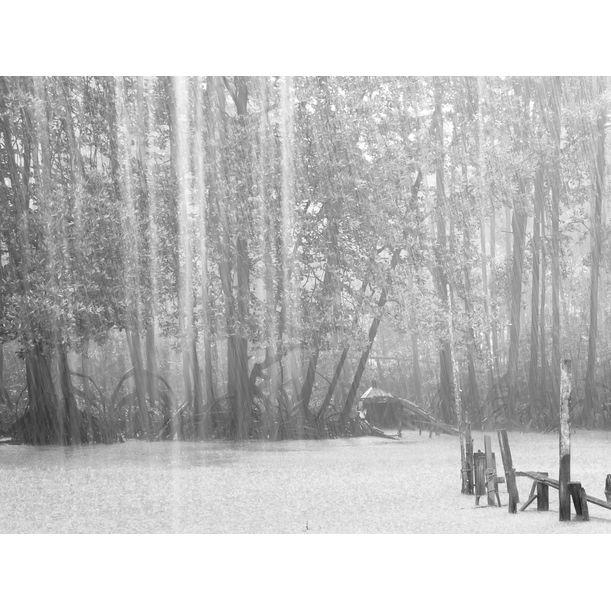 Raintone by Lee Chee Wai