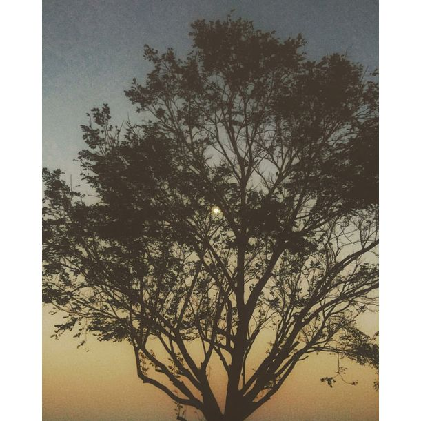 Sunset and the moon by Mary Grace Soriano