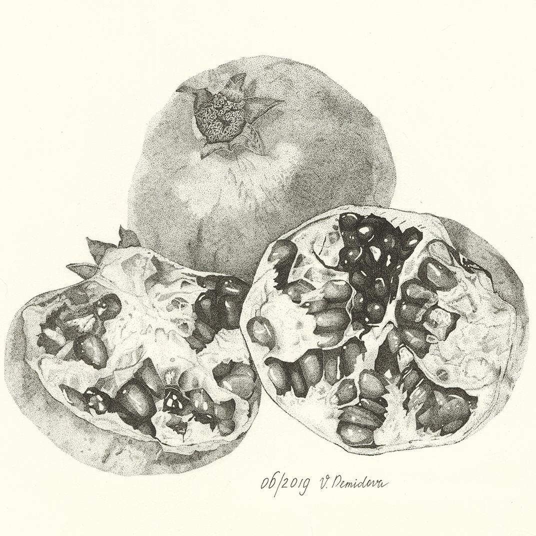 Pomegranate by Victoria Demidova