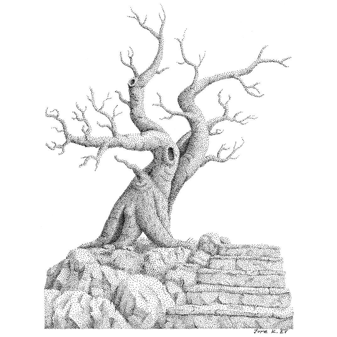 tree- five steps by Jure Kralj