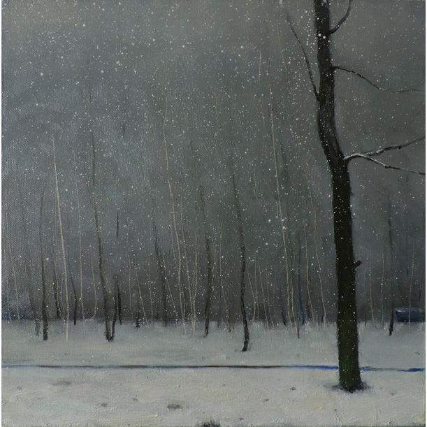 Winter park by Igor Sokolov