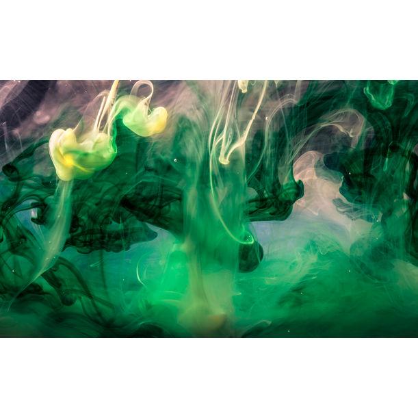 Monet's Dream by Javiera Estrada
