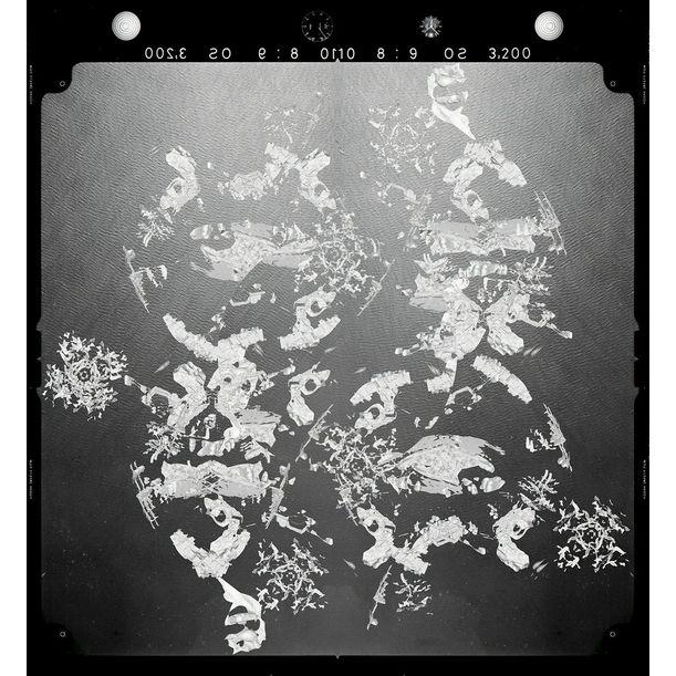 New Order 04 by Yuki Yamazaki