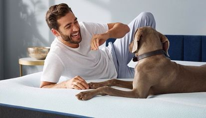Know What Mattress You Should Buy