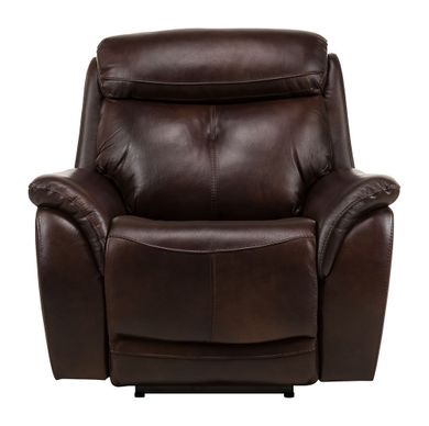 Alpha Brown Power Recliner