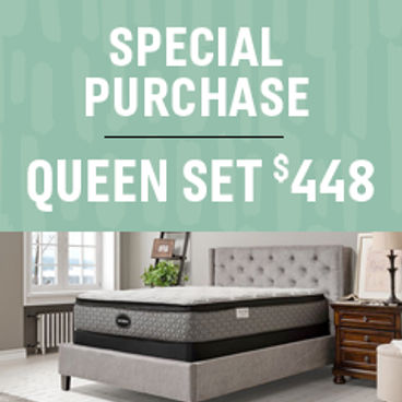 Special Purchase | Queen Set $448