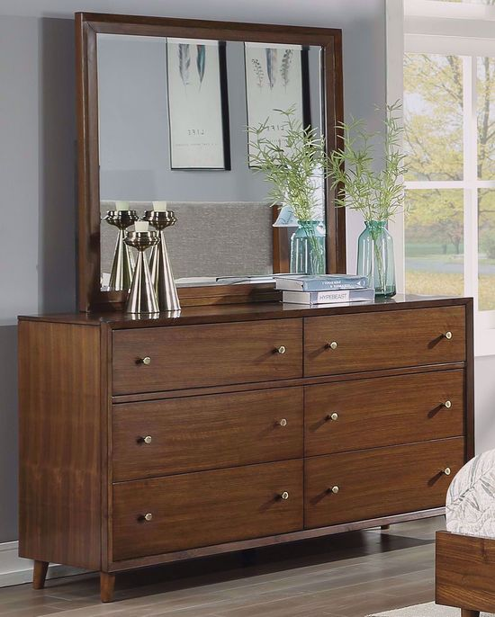 Picture of Ludwig Dresser and Mirror