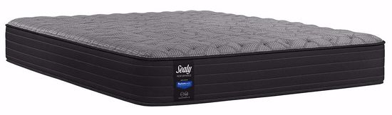 Picture of Sealy Elm Avenue Firm Twin Mattress